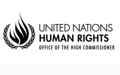 GPR2C contributions to UN Special Rapporteurs report on COVID-19 and human rights